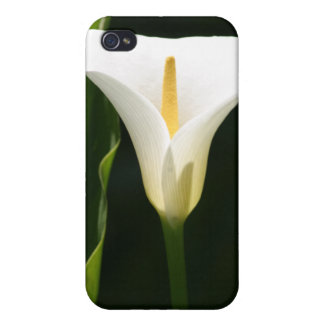 Calla Lily iPhone 4 Case