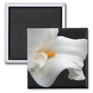 Calla lily magnet