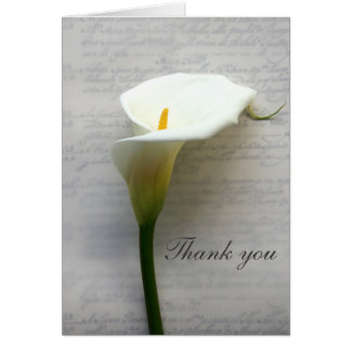 Calla lily on old handwriting card