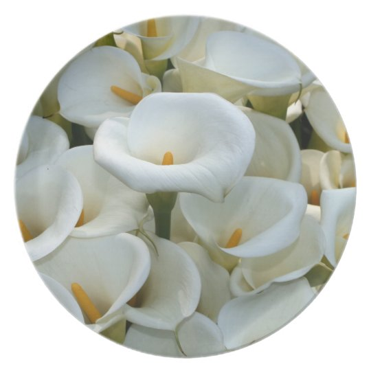 Calla Lily Plantation, Taiwan Plate