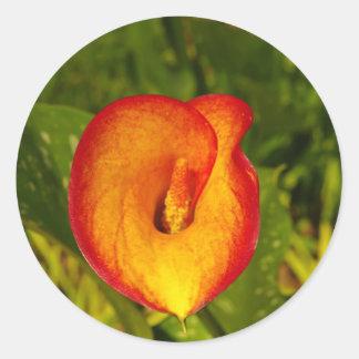 Calla Lily Round Sticker