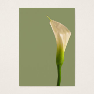 Calla lily Sage Green Card