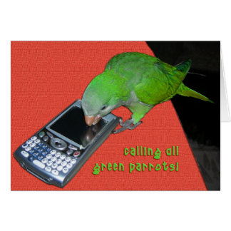 Calling All Green Parrot Card