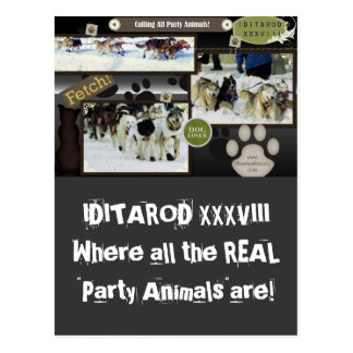 Calling all party animals! postcard