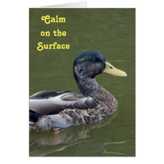 Calm, Yet Crazy Duck Card