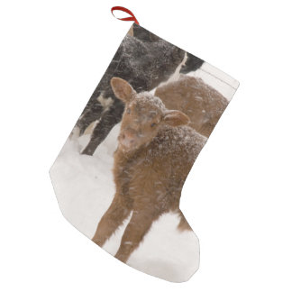 Calves in The Snow Small Christmas Stocking