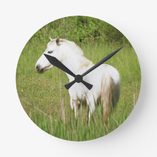 Camargue Horse in the Alpes Cote d'Azur of the Wall Clock