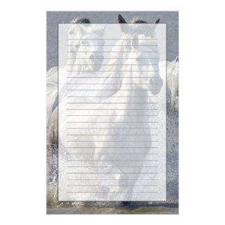 Camargue horses running on marshland to cross stationery
