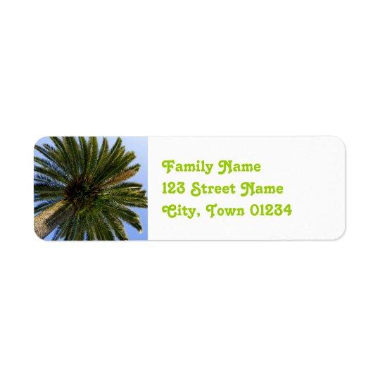 Cambodia Palmya Palm