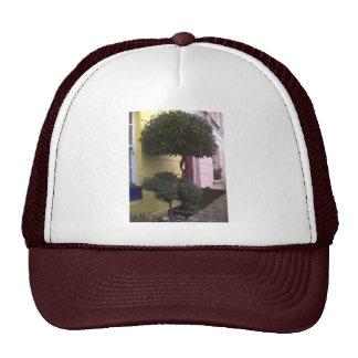 Camden Town Mesh Hats