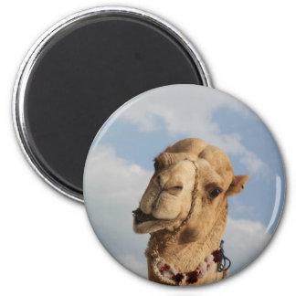camel 2 inch round magnet