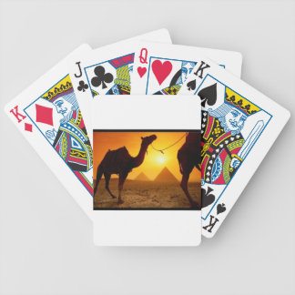 camel bicycle playing cards