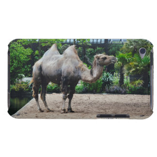 Camel iPod Touch Cover