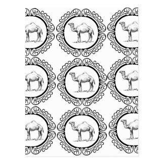 Camel Cluster Postcard