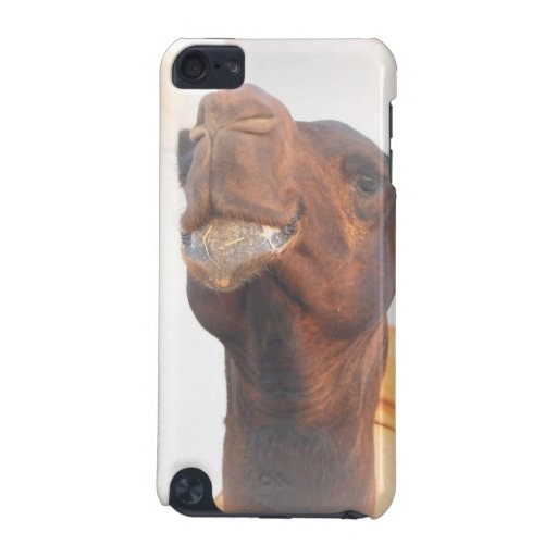 Camel Collage iTouch Case iPod Touch (5th Generation) Covers