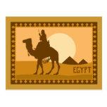 Camel Egypt Post Cards