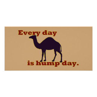 "Camel ""Every Day is Hump Day"" Photo Card"