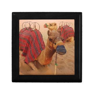 Camel Gift Box