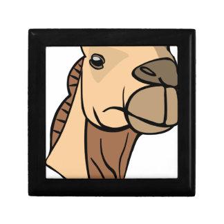 Camel Head Gift Box