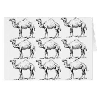 Camel herd art card