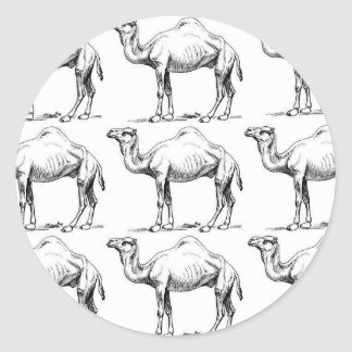 Camel herd art classic round sticker