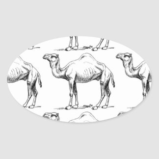 Camel herd art oval sticker