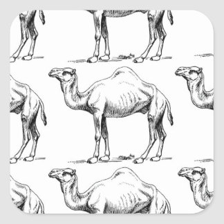 Camel herd art square sticker
