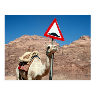 camel hump jordan postcard