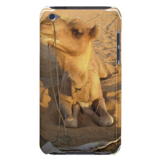 Camel in Desert iTouch Case iPod Touch Cover