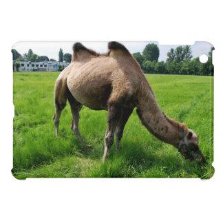 Camel iPad Mini Cover