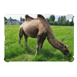 Camel iPad Mini Covers