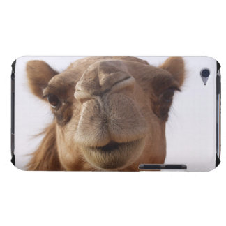 Camel iTouch Case iPod Case-Mate Case