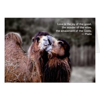 """Camel Kiss - Love is . . ."" Card"