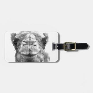 Camel Kisses Fun Closeup Photo Luggage Tag