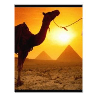 camel letterhead