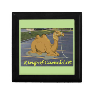 Camel Lot King Jewelry Boxes