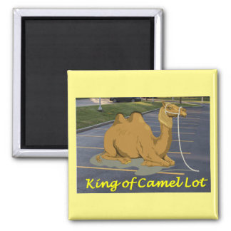 Camel Lot King Square Magnet