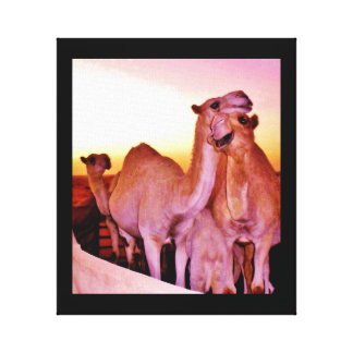 Camel Love Canvas Print
