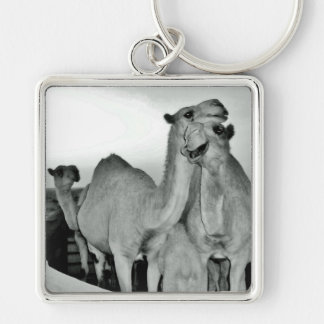 Camel Love Silver-Colored Square Keychain