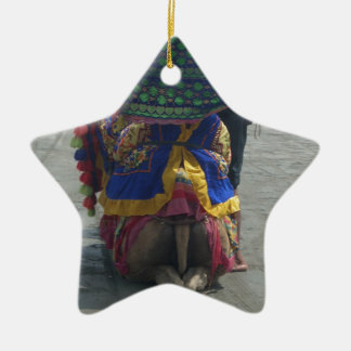 Camel on the toes.png ceramic star ornament