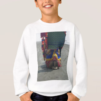 Camel on the toes.png sweatshirt
