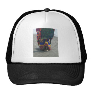 Camel on the toes.png trucker hat