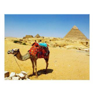 Camel Personalized Letterhead