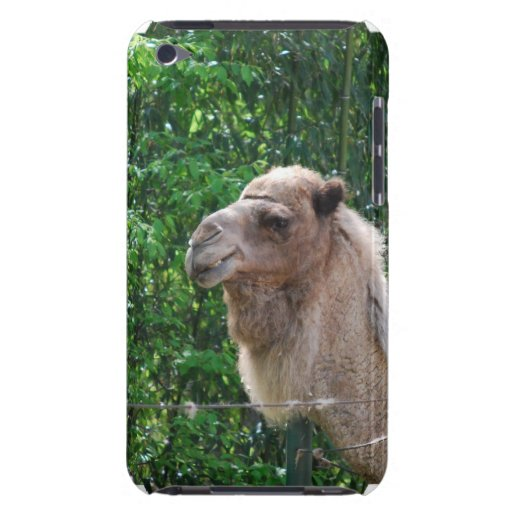 Camel Photo Design  iTouch Case iPod Touch Case-Mate Case