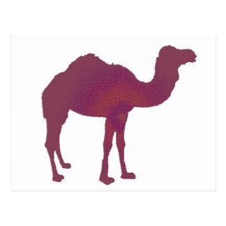 Camel Prestige Postcard