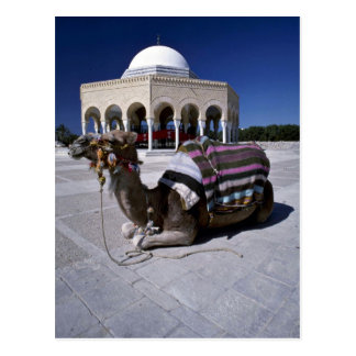 Camel resting in front of dome, Monastir, Tunisia Postcard