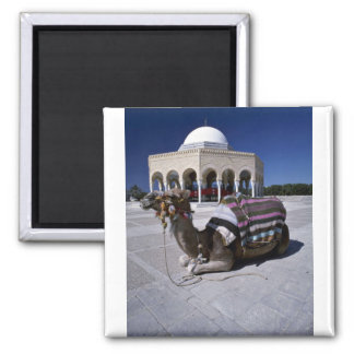 Camel resting in front of dome, Monastir, Tunisia Square Magnet