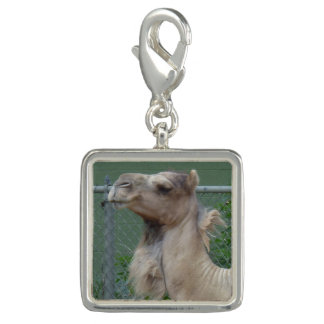 Camel Silver Plated Charm