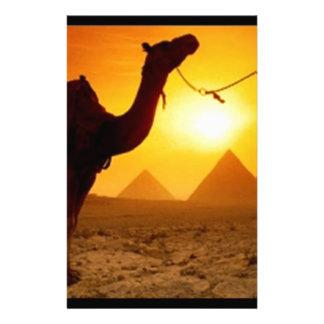 camel stationery