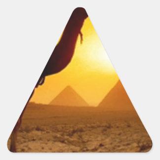 camel triangle sticker